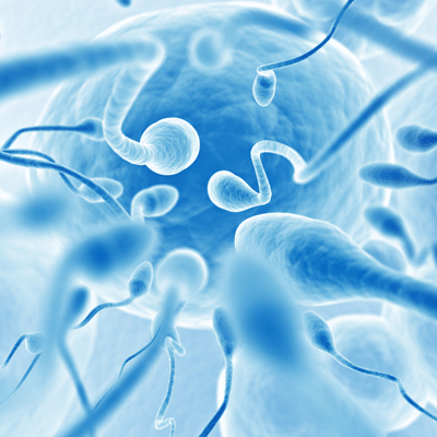 sperm-dna-damage-behind-80-of-unexplained-infertility-says-research_73304