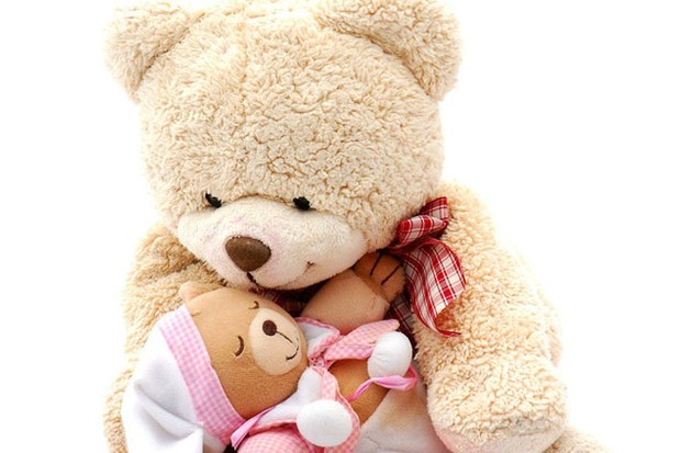 teddy-allowed-to-stay-on-babys-grave_10280