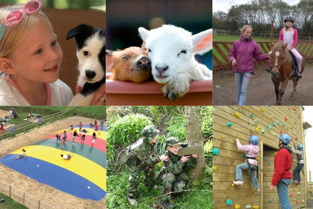 the-big-sheep-review-for-families_58875