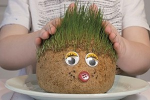 the-dad-lab-grass-hedgehog_203212