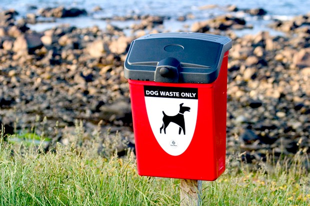 the-dangers-of-dog-poo-for-children_15244