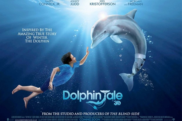 the-dolphin-tale-3d-movie-review_28742