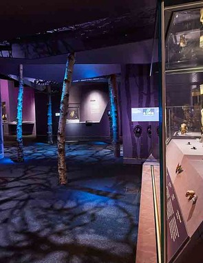 the-natural-history-museum-–-life-in-the-dark-exhibition_210050