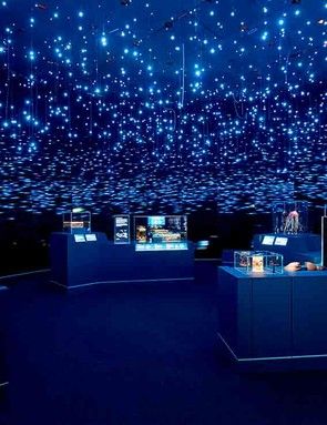 the-natural-history-museum-–-life-in-the-dark-exhibition_210053