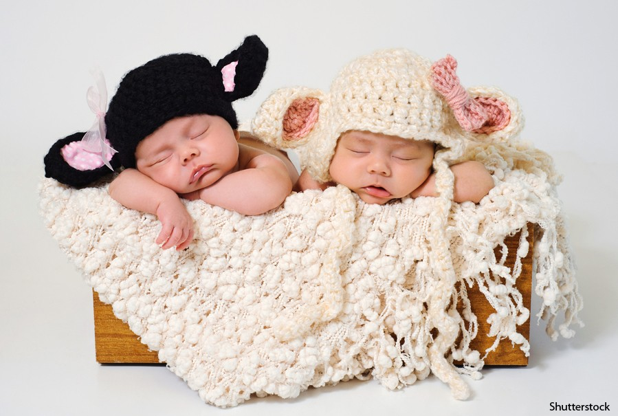 uk-baby-boom-sees-rise-in-multiple-births_73577