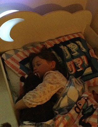 worlds-apart-hellohome-starbright-toddler-bed_151615