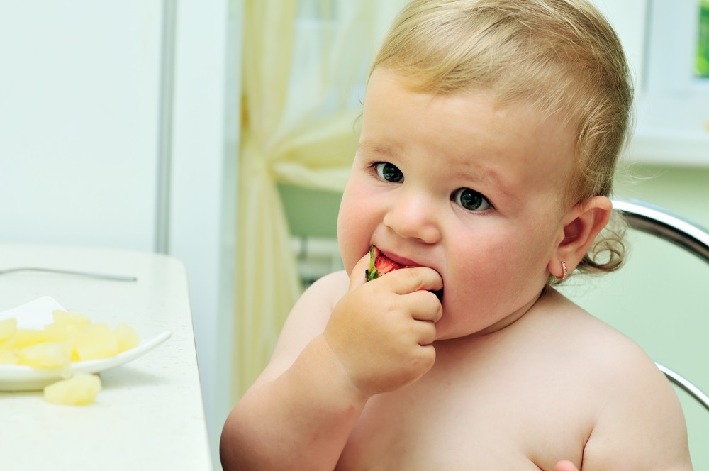 your-8-5-month-old-introducing-finger-food_23152