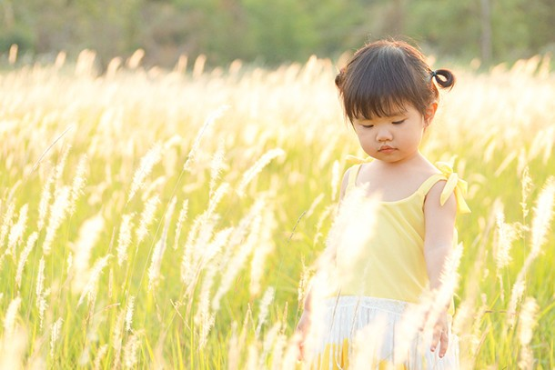 your-toddlers-hay-fever_152153