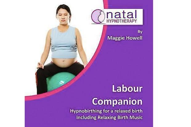 labour-companion rs