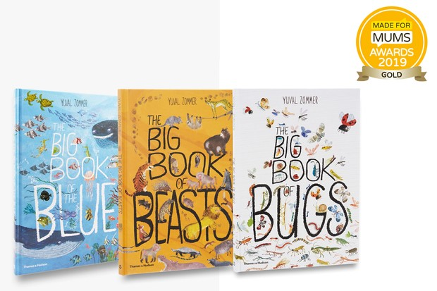 the-big-book-series