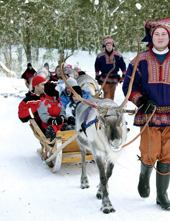 Sami-and-Reindeer-(2)