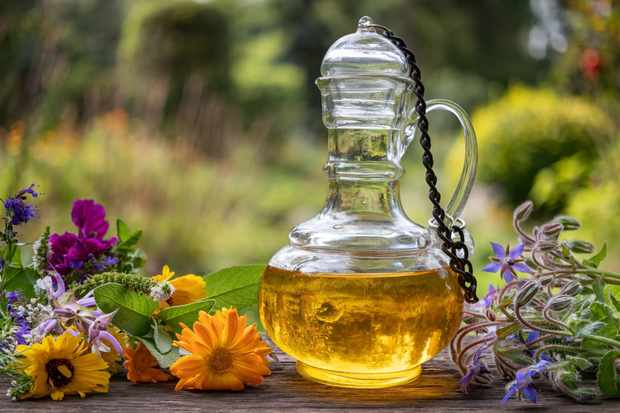 A bottle of oil with fresh blooming borage, calendula, clary sage and other herbs and flowers