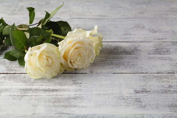 white roses on a wooden table