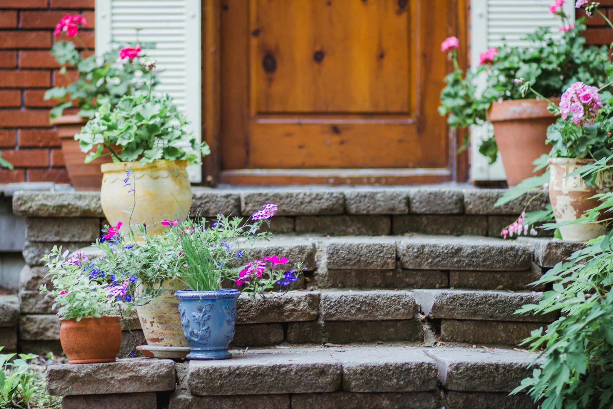 Potted plants with flowers on the steps of a house porch
