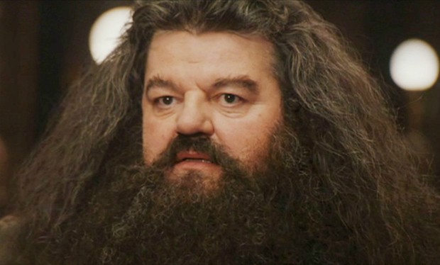 is hagrid from harry potter a lot more powerful than anyone thought