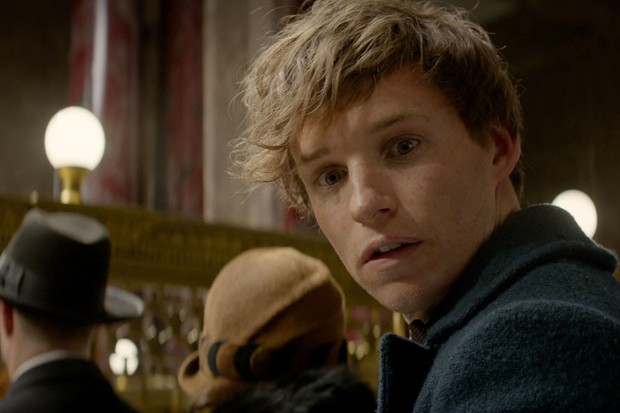 Did you spot Newt Scamander in Harry Potter and the Prisoner