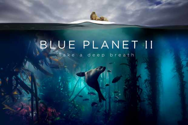 Blue Planet II Landscape