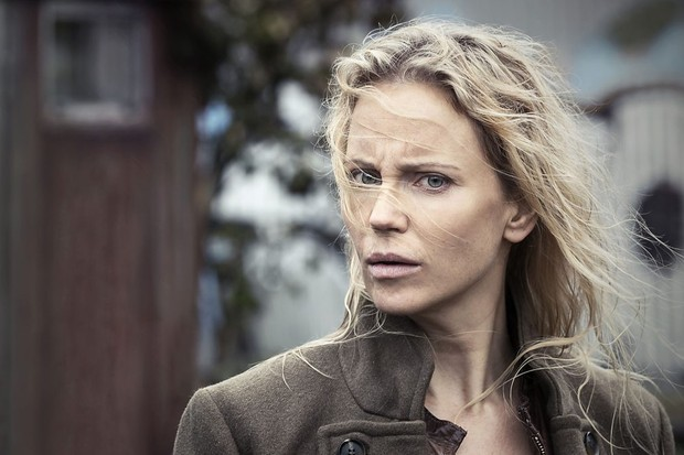 Sofia Helin, The Bridge