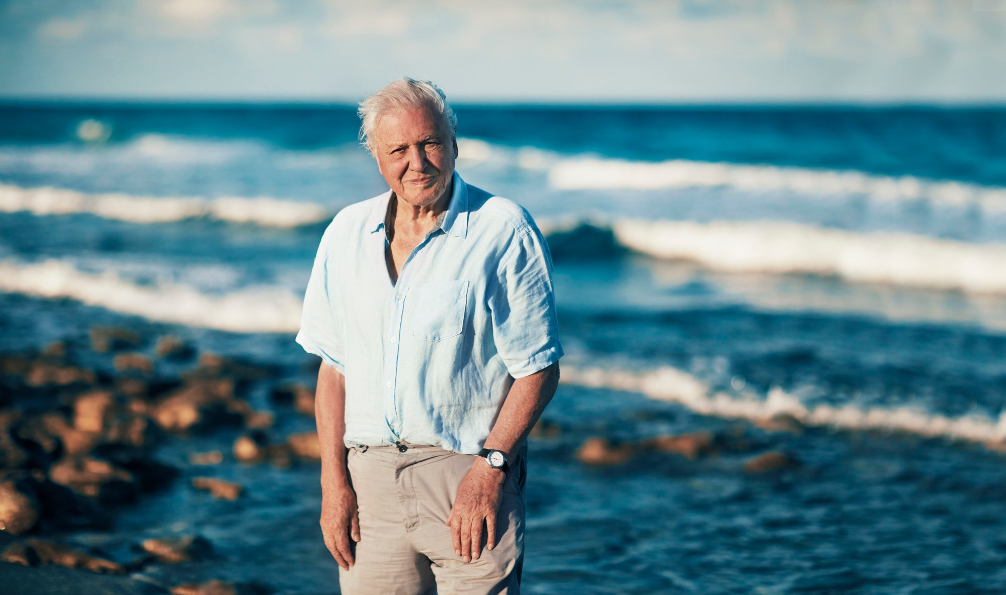 Sir David Attenborough in Blue Planet II (BBC, TL)