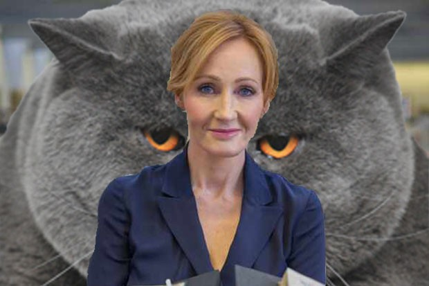 JK Rowling's Assistant Spent $1,577 on Two Cats