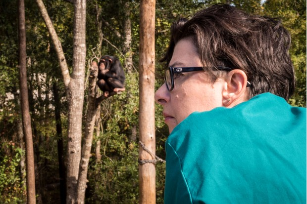 WARNING: Embargoed for publication until 00:00:01 on 28/11/2017 - Programme Name: Sue Perkins and the Chimp Sanctuary - TX: n/a - Episode: n/a (No. n/a) - Picture Shows: with chimpanzees, Chimp Haven.Chimp Haven **STRICTLY EMBARGOED UNTIL 00:01 HRS ON TUESDAY 28TH NOVEMBER 2017** Sue Perkins - (C) Minnow Films - Photographer: Francis Longhurst