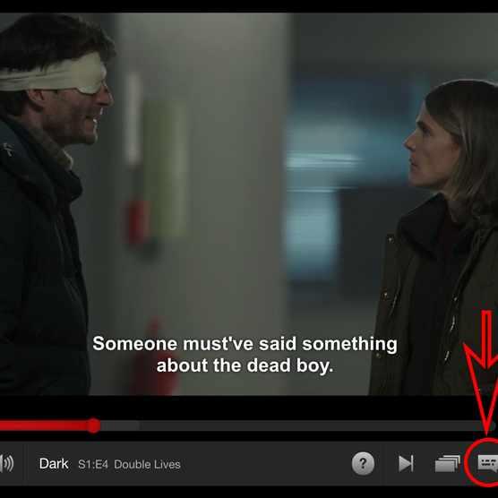 Netflix subtitles