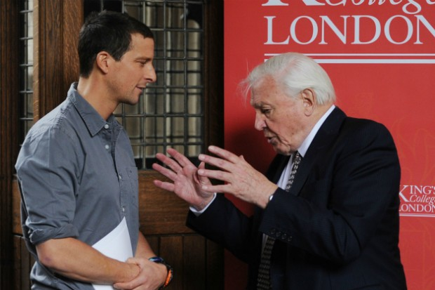Bear Grylls and David Attenborough