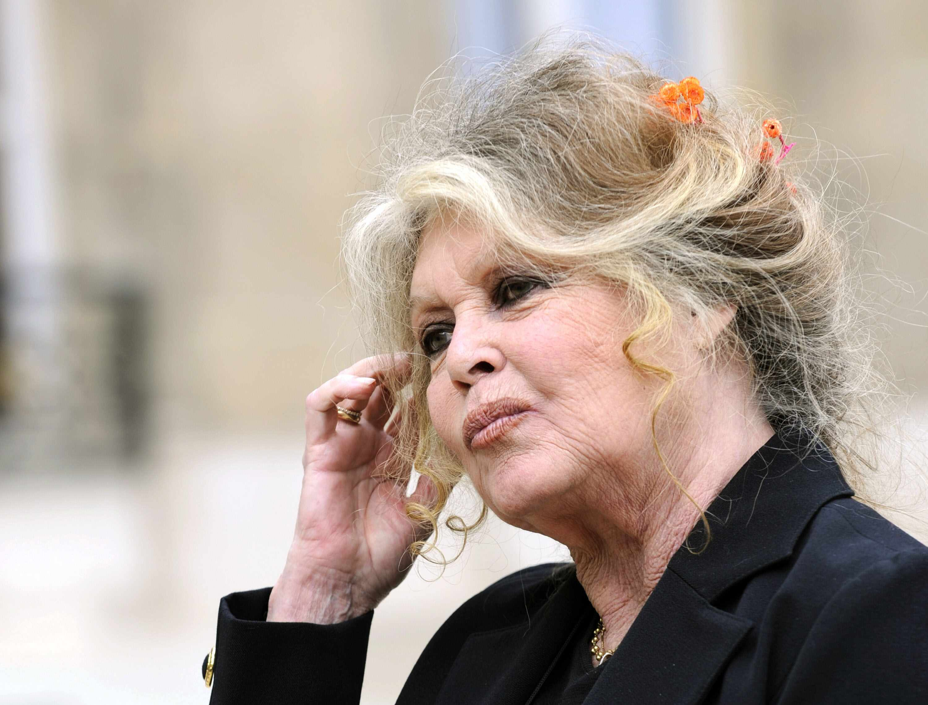 FILES - A picture taken on September 27, 2007 shows French film legend and animal rights activist Brigitte Bardot posing at the Elysee palace in Paris after a meeting with French President Nicolas Sarkozy. Bardot, France's 1960s screen icon, received a 15,000-euro (23,000 dollar) fine on June 3, 2008 for inciting hatred against Muslims.     AFP PHOTO ERIC FEFERBERG         (Photo credit should read ERIC FEFERBERG/AFP/Getty Images)  Getty, TL