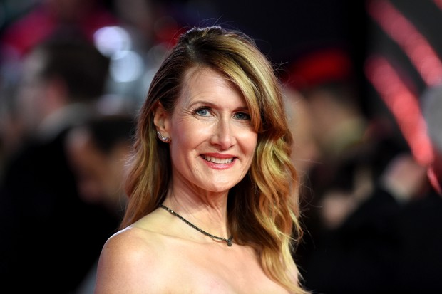 Laura Dern (Getty, EH)