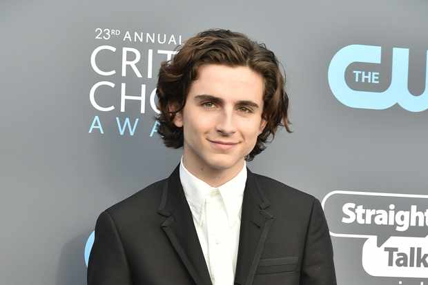 Timothée Chalamet (Getty, EH)