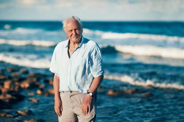 Programme Name: Blue Planet II - TX: n/a - Episode: n/a (No. n/a) - Picture Shows: Sir David Attenborough - (C) - - Photographer: -