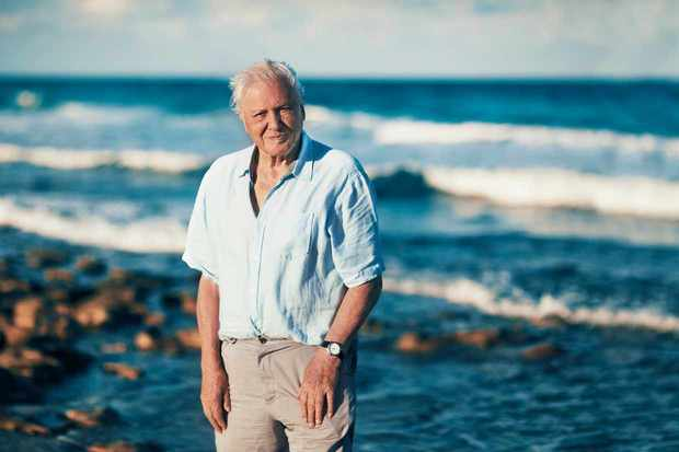 Programme Name: Blue Planet II - TX: n/a - Episode: n/a (No. n/a) - Picture Shows:  Sir David Attenborough - (C) - - Photographer: -