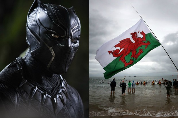 Black Panther and Wales (Marvel, Getty, HF)