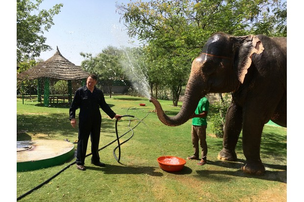 Being sprayed by an elephant at a sanctuary outside Jaipur