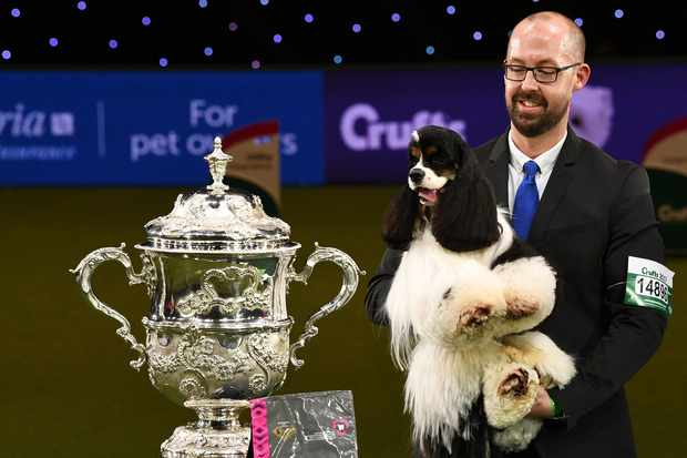 Jason Lynn and Miami at Crufts 2017 (Getty, EH)