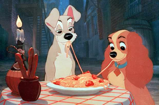 Lady And The Tramp (1955)  © Disney  Sky pics, TL