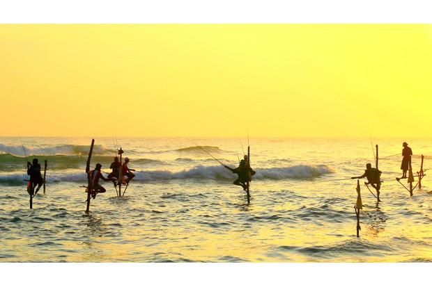 Stilt fishing is unique to Sri Lanka