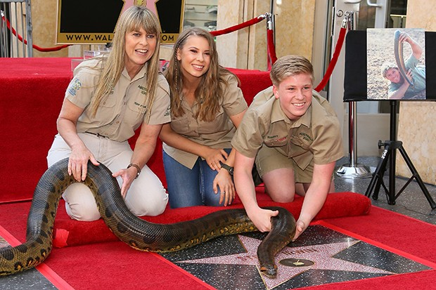 Steve Irwin Honored Posthumously with a star on The Hollywood Walk Of Fame