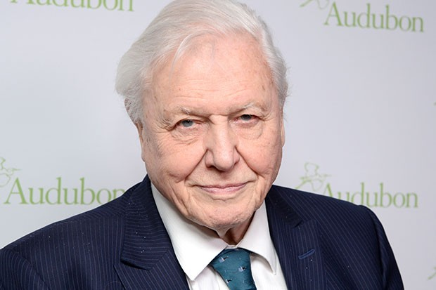 attenborough-walk
