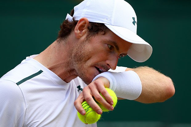 Andy Murray at Wimbledon, Getty, SL