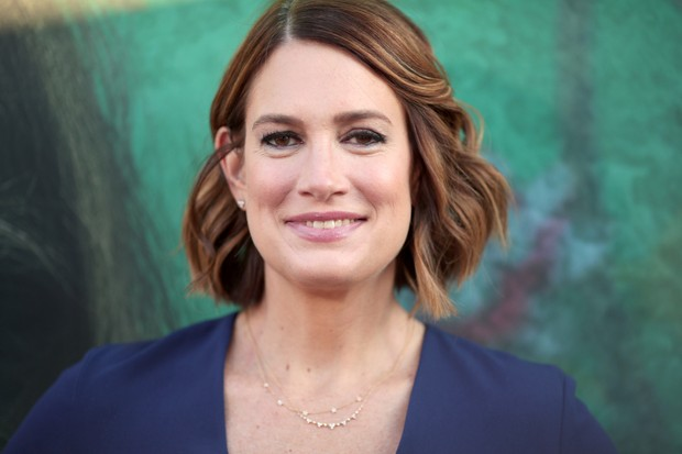 Gillian Flynn (Getty, EH)