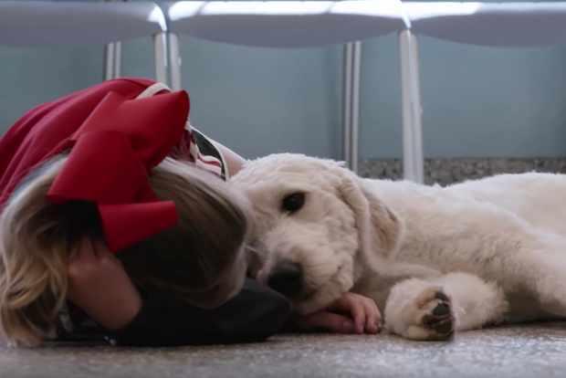 Dogs Netflix screenshot