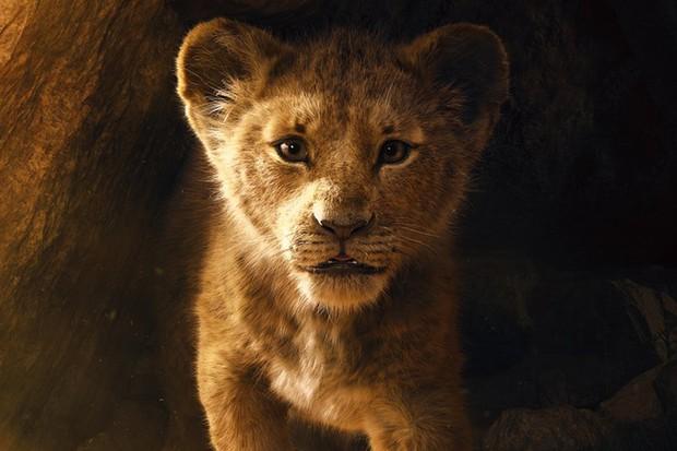 Simba in The Lion King (Disney, 2019)