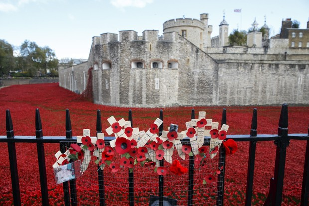LONDON, UNITED KINGDOM - NOVEMBER 07: A view of artistic installation entitled 'Blood Swept Lands and Seas of Red' consisting of 888,246 ceramic poppies planted to fill the moat of the Tower of London marking the centenary of the outbreak of the First World War in London, United Kingdom on November 07, 2014. (Photo by Tolga Akmen/Anadolu Agency/Getty Images)