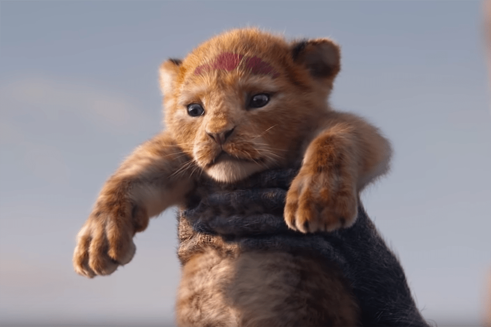 Simba in the Lion King (2019, Disney)