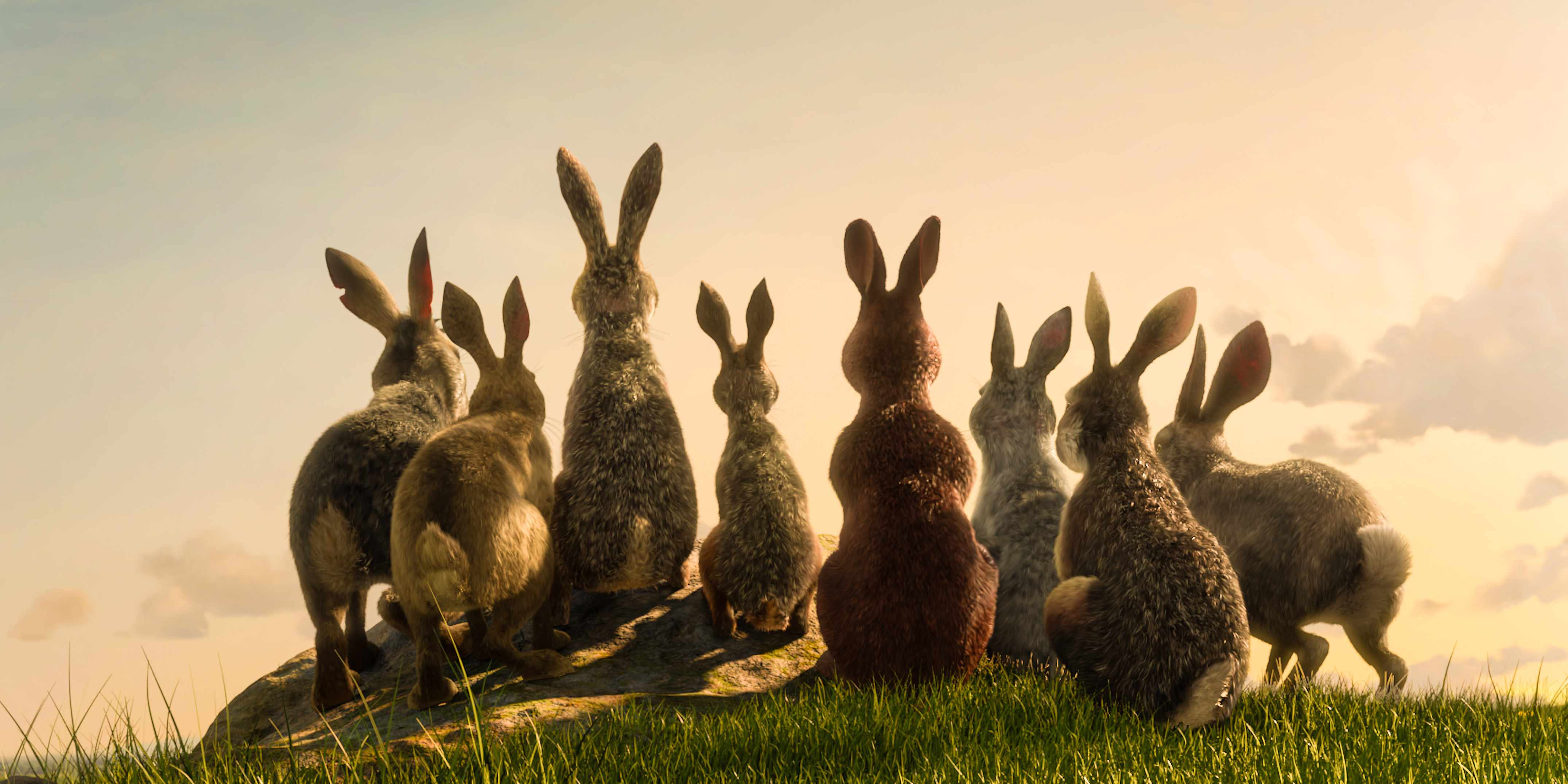 Watership Down - coming to BBC One this Christmas