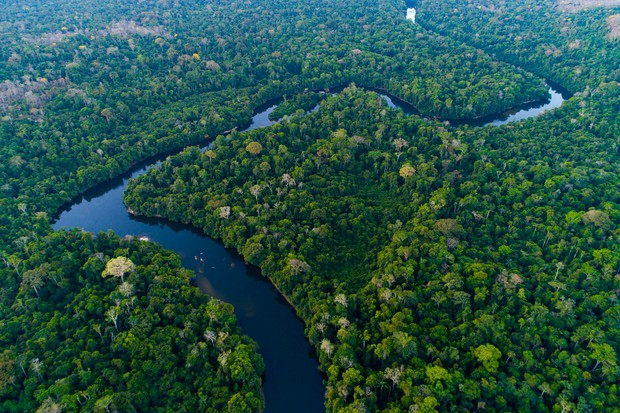Programme Name: Earth's Greatest Rivers - TX: n/a - Episode: Earth's Greatest Rivers - Amazon (No. n/a) - Picture Shows: Black water river meandering through rainforest. - (C) Joao Paulo Krajewski - Photographer: Joao Paulo Krajewski