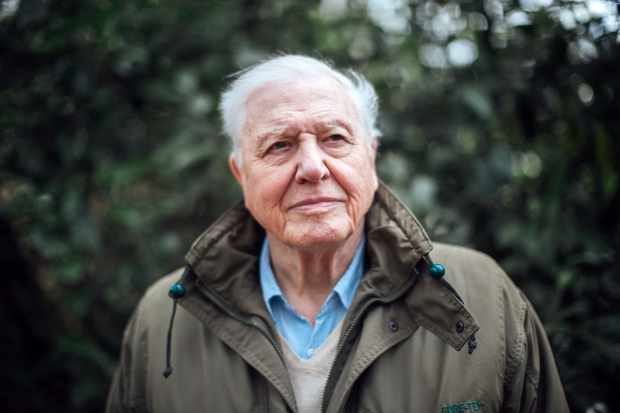 WARNING: Embargoed for publication until 00:00:01 on 22/03/2019 - Programme Name: Climate Change with David Attenborough (tbc)  - TX: n/a - Episode: Climate Change with David Attenborough (tbc) - announcement (No. n/a) - Picture Shows: ***STRICTLY EMBARGOED UNTIL 00:00:01 FRIDAY 22nd MARCH 2019*** Sir David Attenborough - (C) BBC - Photographer: Polly Alderton