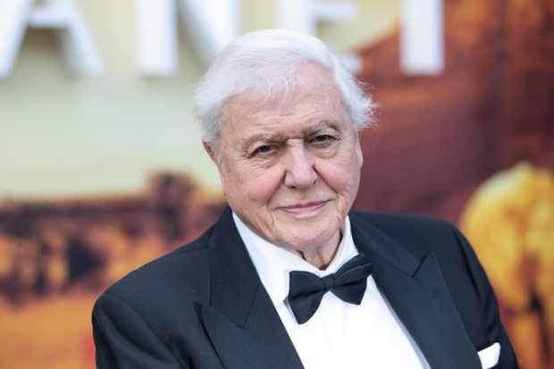 David Attenborough appears at the royal premiere for Our Planet (Netflix)