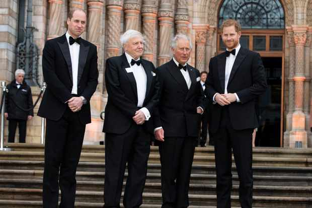 Netflix's Our Planet Royal World Premiere, London, April 2019.  (L-R) HRH Prince William, The Duke of Cambridge, Sir David Attenborough, HRH Charles, the Prince of Wales and HRH Prince Harry, the Duke of Sussex